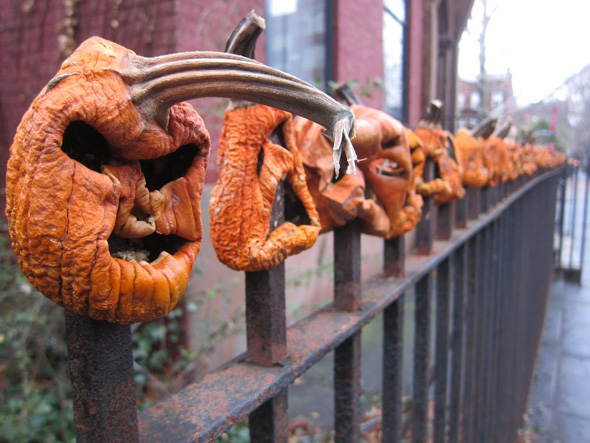 20121026-halloween-toronto